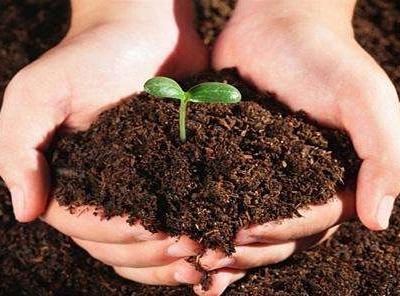 土壤质量检测